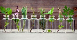 Herbs in essential oil bottles
